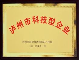 泸州市科技型企业证书